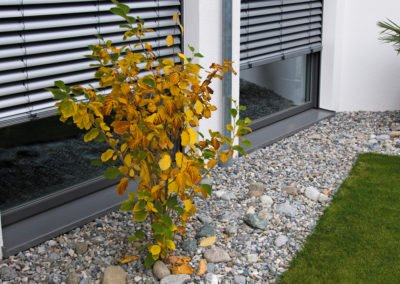 Raffstoren-MODULO-Objekbild-Haus-aussen-Tueren_Fenster