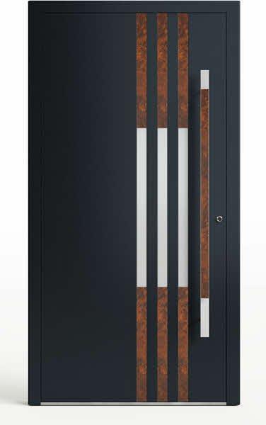Moderne-Haustuer-Glenwood Series 191 R3_handle 2255